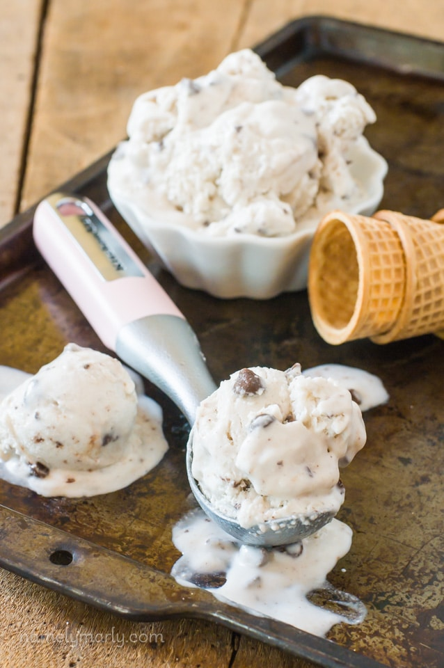 No Churn Vegan Chocolate Chip Ice Cream