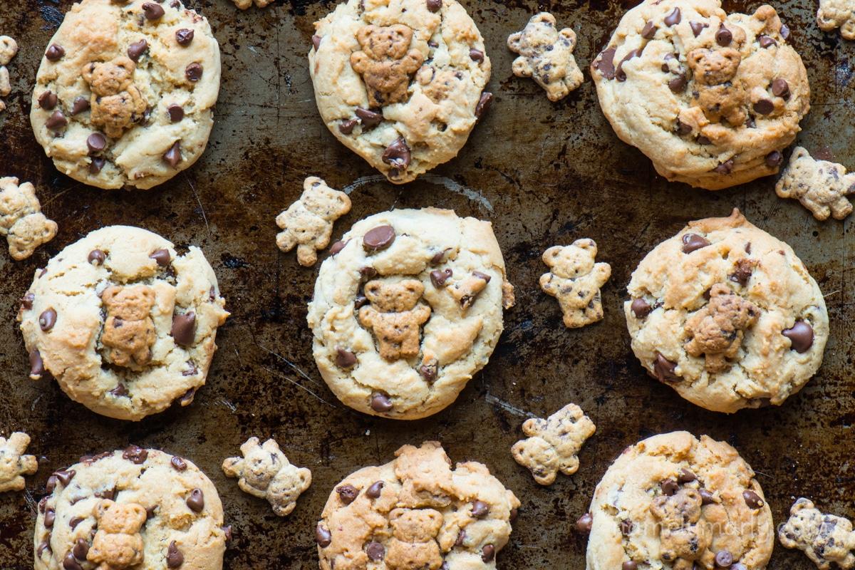 Teddy Graham Chocolate Chip Cookies