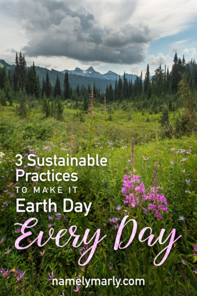 A landscape of mountains and fields of flowers has this text overplayed: 3 Sustainable Practices to make it Earth Day Every Day!
